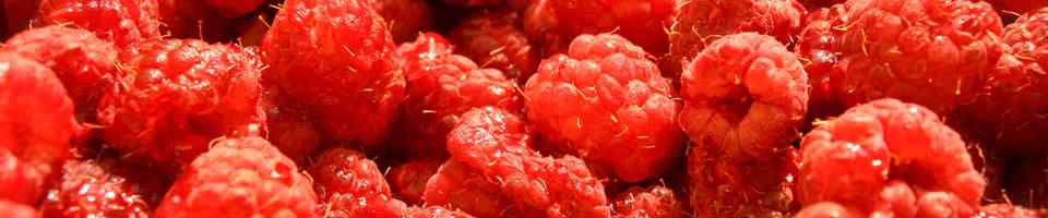 raspberries2.jpg